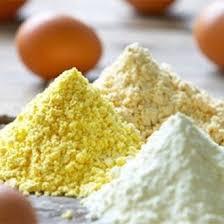طرح کارآفرینی تاسیس کارخانه تولید پودر تخم مرغ