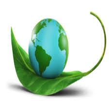 پاورپوینت بررسی قانون حفاظت محیط زیست